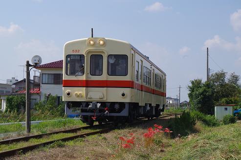 Imgp0549
